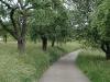 jagsttalwiesenwanderung2011-110